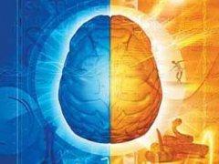 قسمي الدماغ ، الأيمن والأيسر